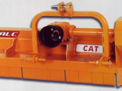 FALC CAT