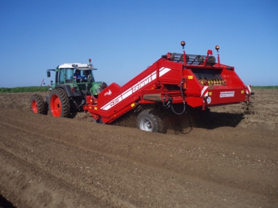 Grimme Maxi Beet
